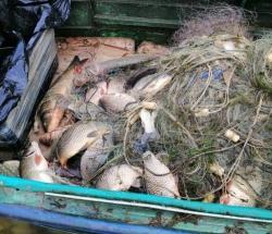 На Херсонщині затримано порушника з майже 51 кг риби
